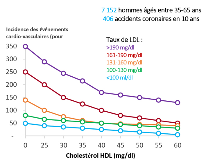 how to raise your hdl cholesterol